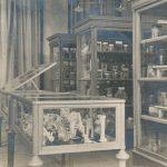 A Kórbonctani gyűjteménytár