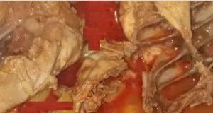 Robbantott csirke